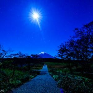 道の駅朝霧 富士山展望台