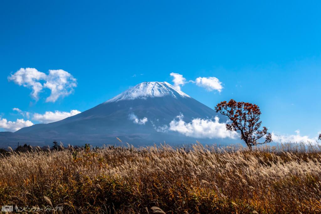 朝霧方面から見た富士山