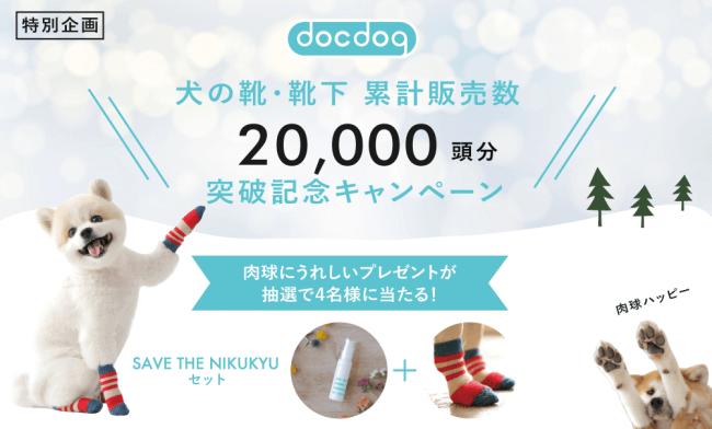 docdogキャンペーン