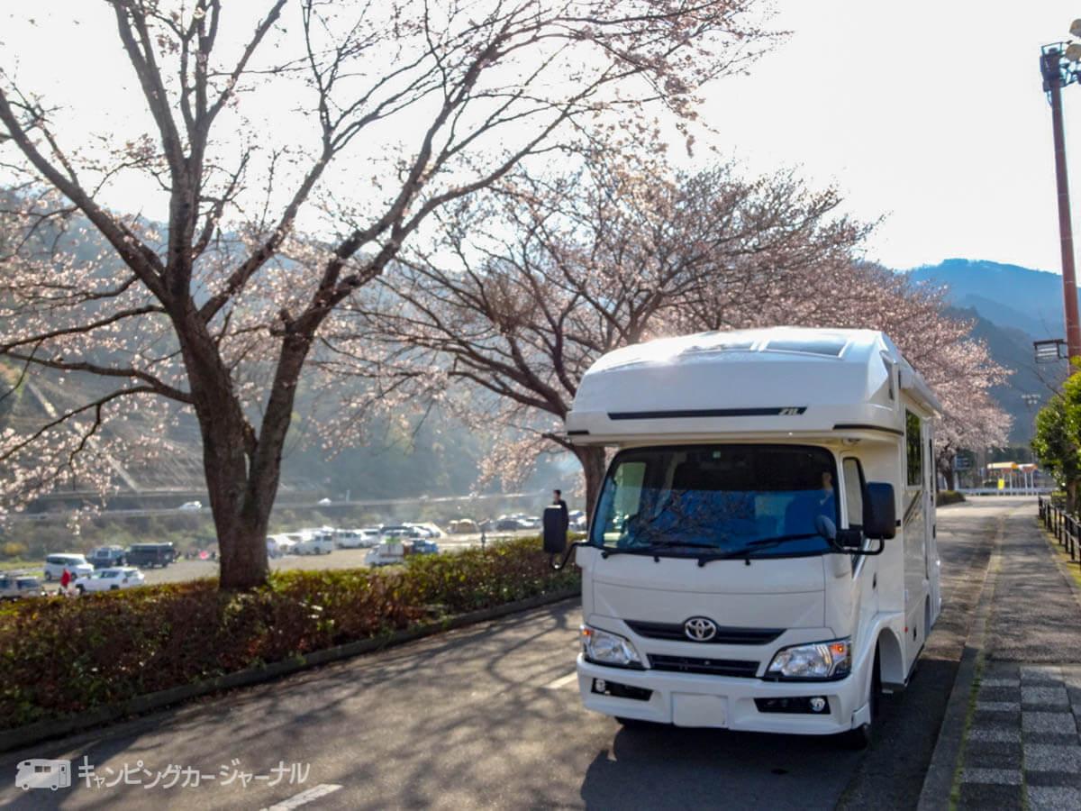 キャンピングカー バンテックZiL 桜